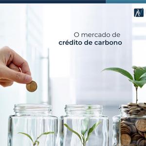 o mercado de credito de carbono